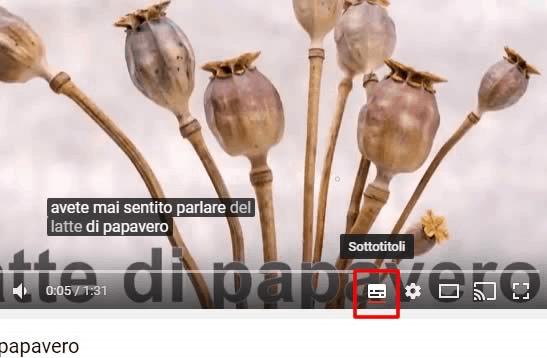 Attivare sottotitoli youtube